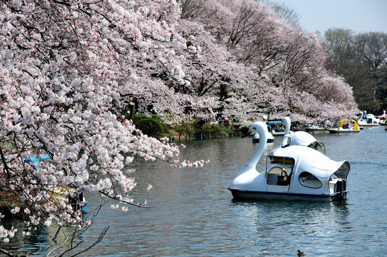 https://www.nomu.com/machikara/wp-content/uploads/2016/01/181306_DSC_5102_r.jpg
